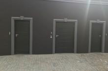 Toilets-102919
