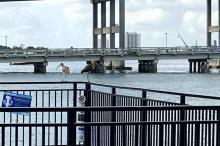 Under-Blue-Heron-Bridge-030221
