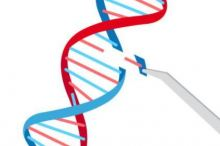 CRISPR-040121